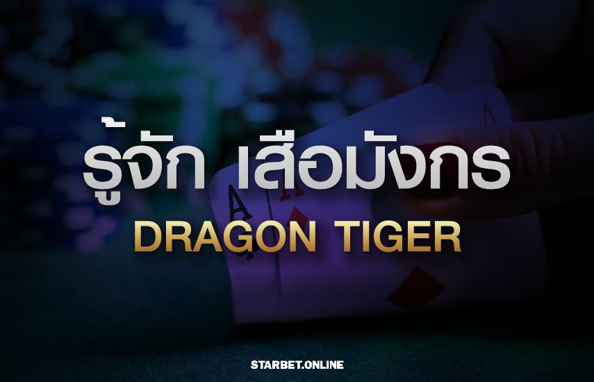 รู้จักกับ เสือมังกร หรือ Dragon Tiger